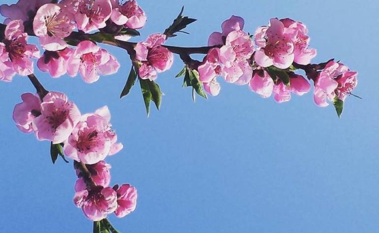 Cambio di stagione, tra benessere e bellezza!