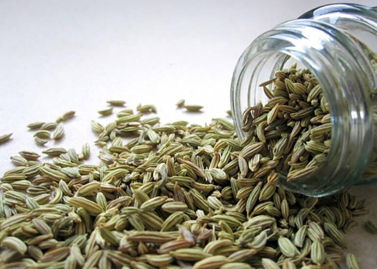 Benefici dei semi di finocchio contro le coliche